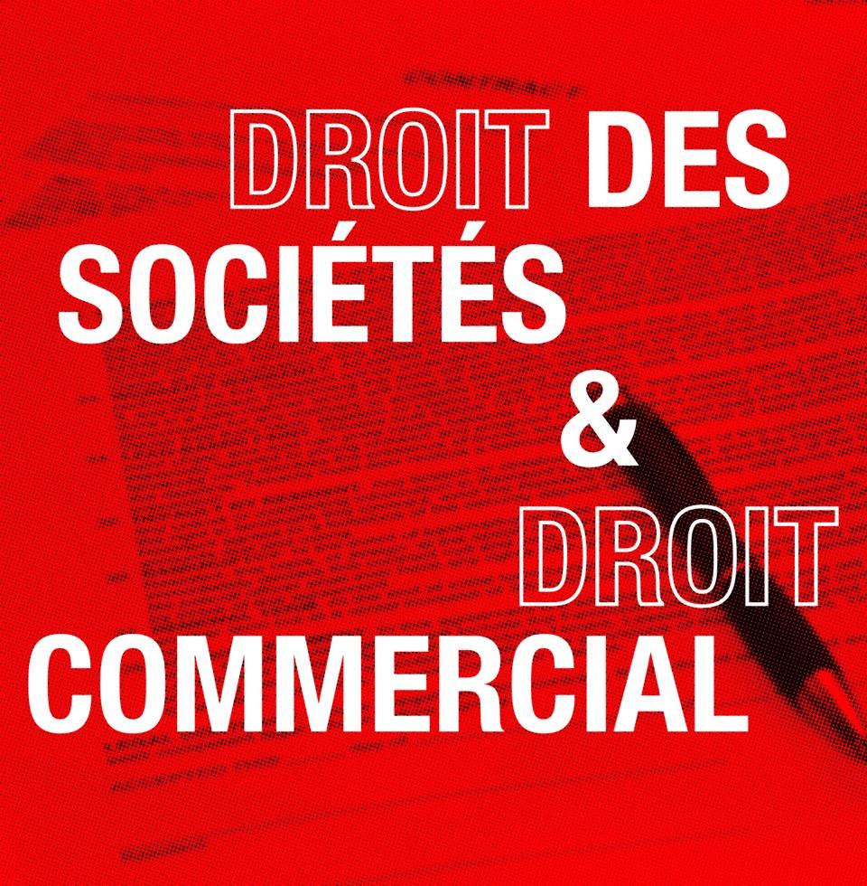 droits des sociétés droit commercial